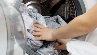 Elegir programa de la lavadora